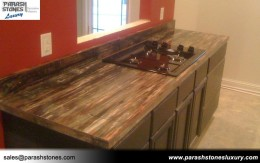 Petrified Wood Kitchen Top