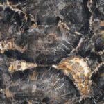 picture of black petrified semi precious gemstone slab, tiles & surface