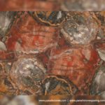 picture of red petrified wood slab, surface & tiles