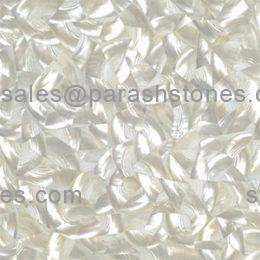picture of troca shell white slab, tiles & surface